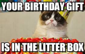 Gifts For Meme - your birthday gift grumpy cat birthday meme on memegen