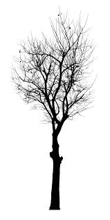 black tree vector svg png onlygfx