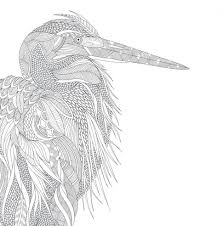 florida wildlife coloring bookwildlife coloring book pdf tags
