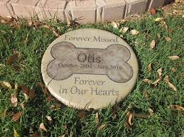 amazon com personalized pet memorial step stone 11