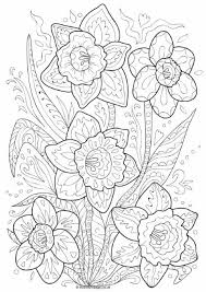 108 printables images draw coloring sheets