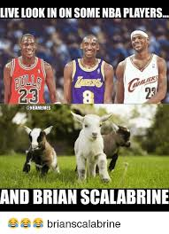 Brian Scalabrine Meme - live look inon some nba players nbamemes and brian scalabrine