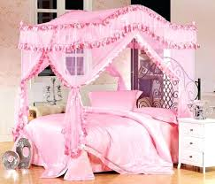 Princess Bed Canopy Twin Princess Bed U2013 Bookofmatches Co