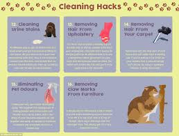 Baking Soda Upholstery Cleaner The 20 Hacks Every Pet Owner Needs To Know From Dog Breath To Claw