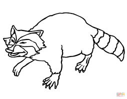 smiling raccoon coloring page free printable coloring pages