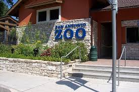 san antonio zoo lights coupon san antonio zoo 2018 all you need to know before you go with