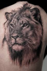 download lion tattoo rib cage danielhuscroft com