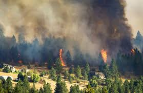 How Many Wildfires In Washington State by Fast Moving Wildfires Burn Thousands Of Acres Force Evacuations