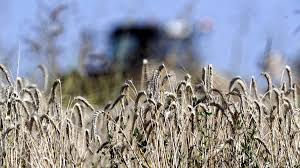 chambre d agriculture d auvergne en auvergne pas facile de transmettre une exploitation agricole