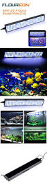 Fluval Sea Marine And Reef Led Strip Lights by Best 10 Led Aquarium Lighting Ideas On Pinterest Aquarium Led