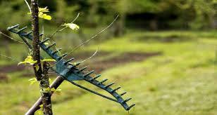Types Of Garden Rakes - essential garden tools spades hoes rakes wheelbarrows