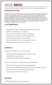 Resume Volunteer Experience Example by Resume Volunteer Experience Tips