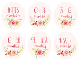 Closet Dividers Baby Infant Clothing Printable Tags Labels Dividers For