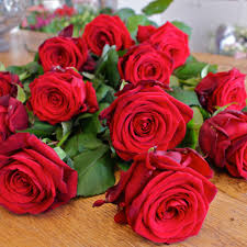 valentines day roses roses bouquet valentines day s day info