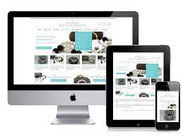 dux technology premier website development company in patna