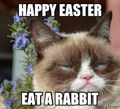 Birthday Meme Grumpy Cat - deluxe happy easter grumpy cat s and for wallpaper site