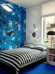 Interior Blue Teenage Bedroom Color Schemes Pictures Options U0026 Ideas Hgtv