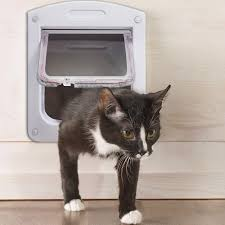 Interior Cat Door With Flap by Oxgord Dog Cat Flap Doors With 4 Way Lock For Pets Entry U0026 Exit
