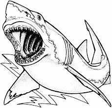 coloring pages sharks printable funycoloring