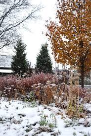 149 best winter in the garden images on pinterest winter garden