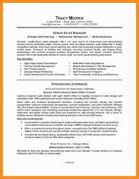 sample resume of team leader in call centre ebook resume writing