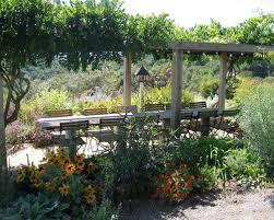 Backyard Beer Garden - beer garden houzz
