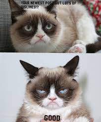 Ugly Cat Meme - fan made grumpy cat meme