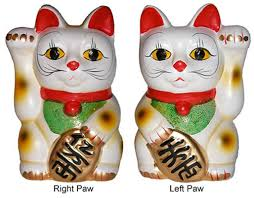 4 things you need to about your fortune cat daily jambo