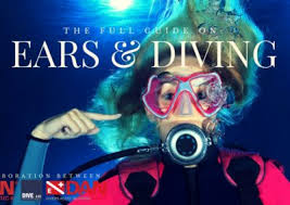 dive in scuba diving u0026 snorkeling free magazine for divers