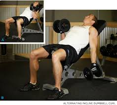 Bench Bicep Curls Two Heads Are Better Than One 5 Moves For Balanced Biceps