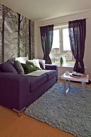 living room great grey carpets for living room for modern