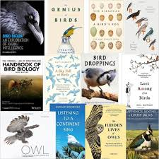 the 12 best books about birds and birding in 2016
