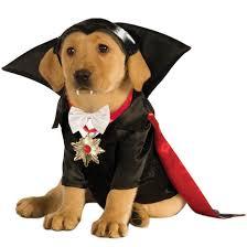 vampire dracula dog costume dog costumes dog stuff pinterest