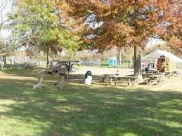 Backyard Shade Trees Milburns Big Backyard Picnic Tables U0026 Shade Trees Picture Of