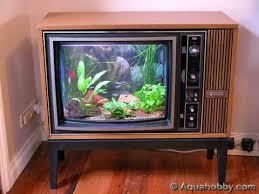 Home Aquarium Decorations 14 Best Fish Tanks Images On Pinterest Animals Aquarium Ideas