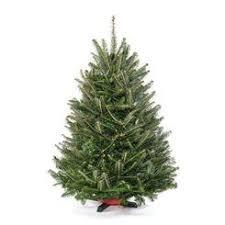 unlit christmas trees trees 0 14 in sears