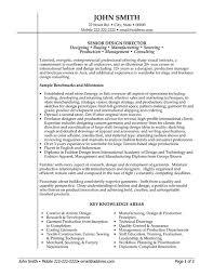 sample executive director resume sample objectives resume sales