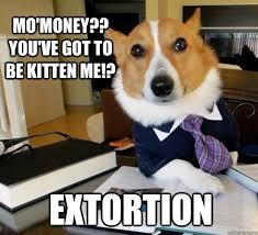 Mo Money Meme - mo money you ve got to be kitten me extortion lawyer dog
