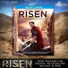 risen movie home facebook