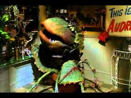 Feed Me Seymour Meme - little shop of horrors feed me youtube
