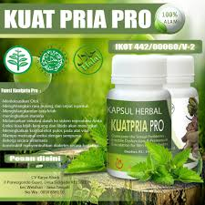 kuat pria pro obat kuat diabetes toko herbal bpom romantis id
