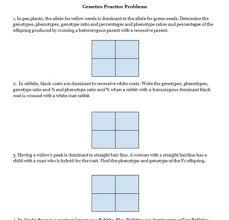 mendel powerpoint and punnett square practice   worksheets by  with mendel powerpoint and punnett square practice   worksheets from teacherspayteacherscom