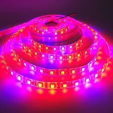 12v dc led grow lights led grow light dc 12v 60leds m growing led strip 5m roll 5050 smd