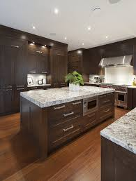 dark maple cabinets kitchen transitional with ceiling lighting