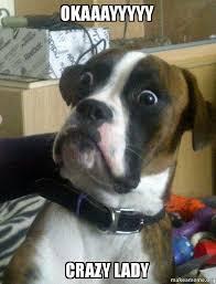 Crazy Lady Meme - okaaayyyyy crazy lady skeptical dog make a meme