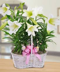 Easter Table Flower Decorations by Easter Lily Flowers Arrangements U2013 Happy Easter 2017