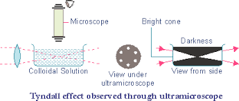 the scattering of light by colloids is called xam idea chemistry colloids and colloidal solutions