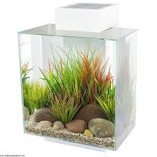 fluval edge 2 large fish tank 46 litre amazing