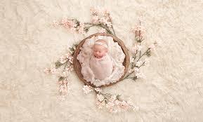 newborn photography newborn photography philadelphia stauffer photography