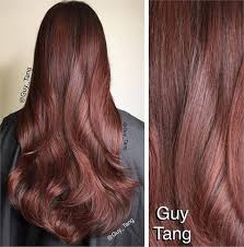 hair color of the year 2015 21 hair color transformations by guy tang inspiration modern salon